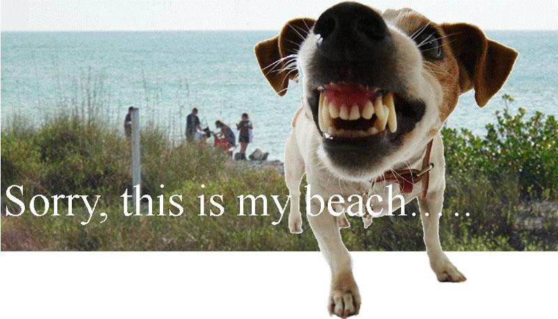 Brohard Beach