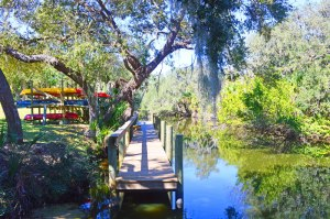 Pinebrook South a great community in Venice with low HOA fees
