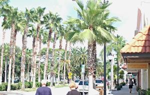 Venice Main Street